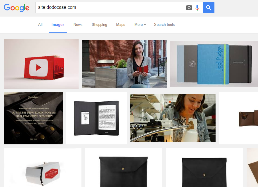 Google image search Dodocase